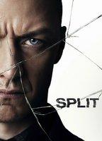 Split 420d1a10 boxcover