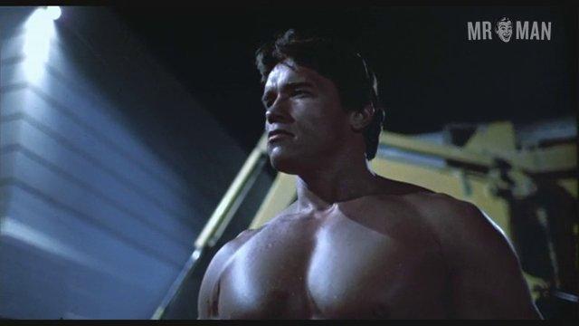Terminator schwarzenegger 01 frame 3
