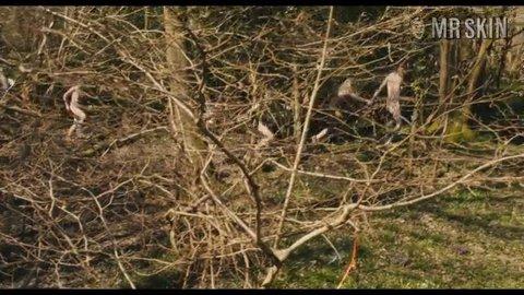 Bonobo wyld hd 02 large 3