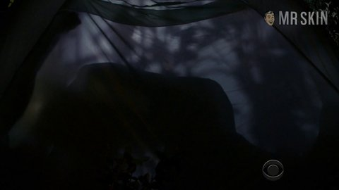 Extant2x11 berry hd 01 large 3
