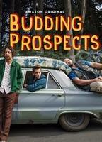 Budding prospects e6e796e0 boxcover